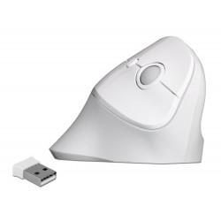 Delock Ergonomická vertikální USB myš - bezdrátová 12596