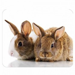 Podložka pod myš, Zajačiky, PVC, 22x18cm, 3mm, Logo 35495