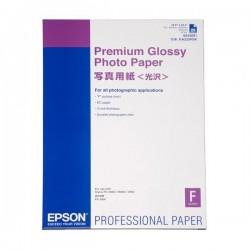 Epson Premium Glossy Photo Paper lesklý, biely, Stylus Photo 890,...