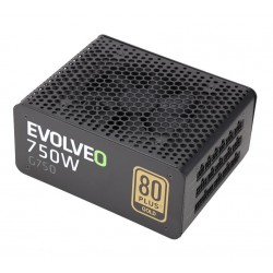 EVOLVEO G750 zdroj 750W, eff 91%, 80+ GOLD, aPFC, modulární, retail E-G750R