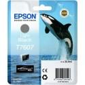 Epson atrament SC-P600 light black C13T76074010