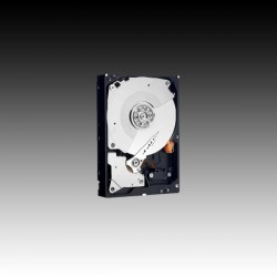 "WD RE 3,5"" HDD 2,0TB 7200RPM 64MB SATA 6Gb/s WD2004FBYZ"